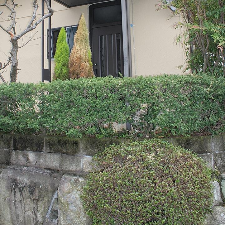 神戸市北区 O様邸の完成写真4