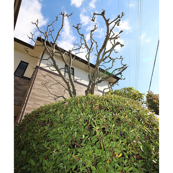 神戸市U様邸の完成写真14