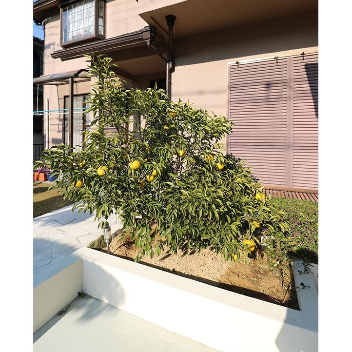 神戸市西区M様邸の完成写真5
