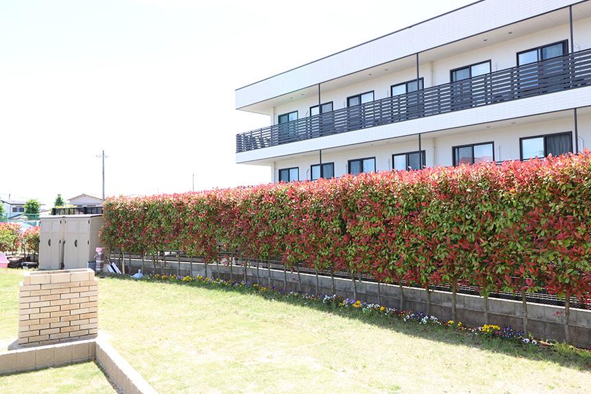 神戸市西区 S様邸の完成写真11